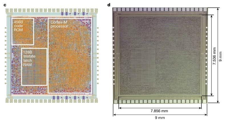 plasticarm processor design How PlasticARM Flexible chips can reshape the Future